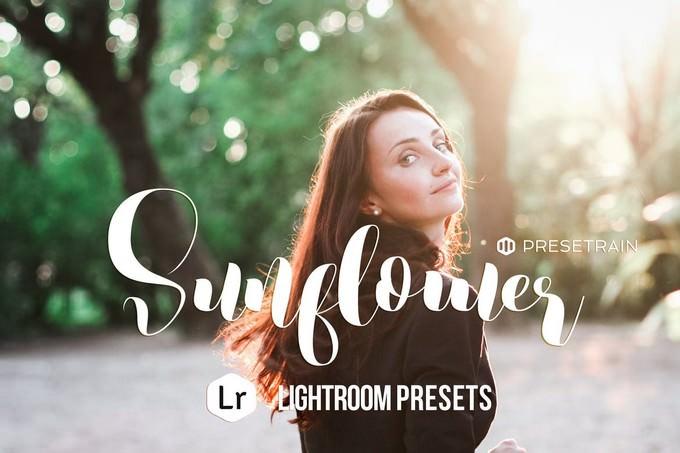 Sunflower Lightroom Preset