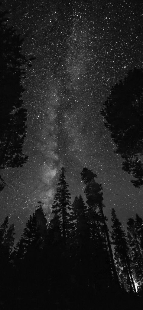 50 Black And White Iphone Hd Wallpapers Templatefor