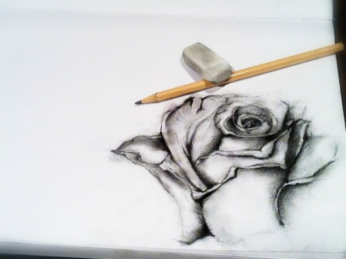 Black Rose Drawing # 2