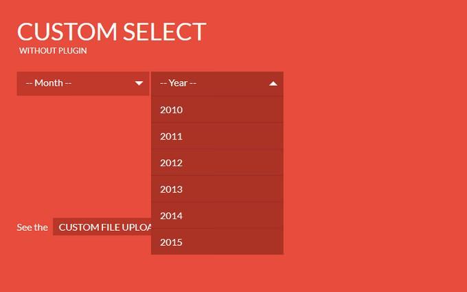 Custom Select Menu