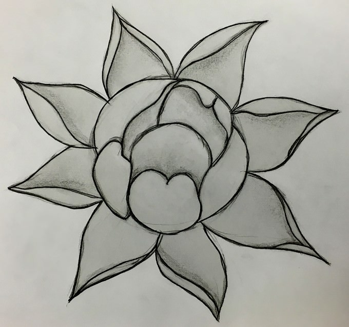 Flower Drawing # 3