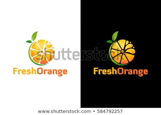 Modern Fresh Orange Logo