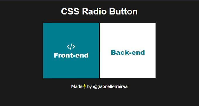 Radio Button Big Square [Just CSS]