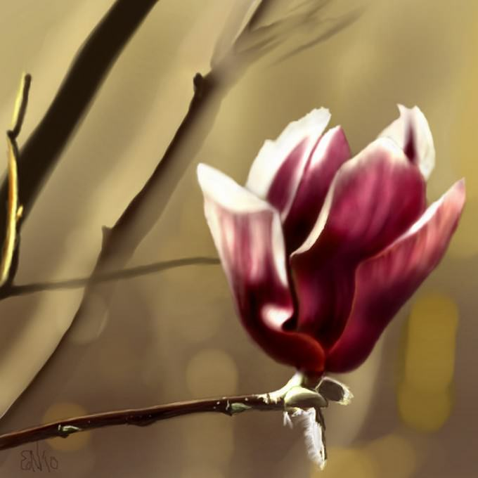 Roses & Flower Digital Drawings