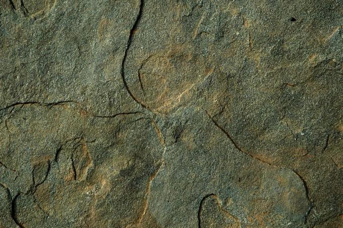 Stone Free Texture # 4