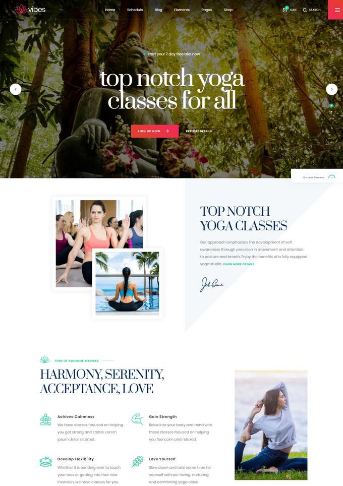 Vibes - Responsive Yoga Template