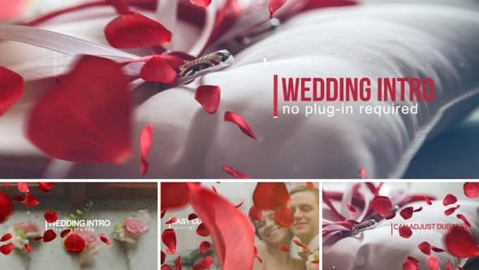 Wedding Intro Template