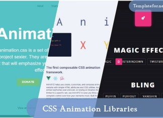 CSS Animation Librarie