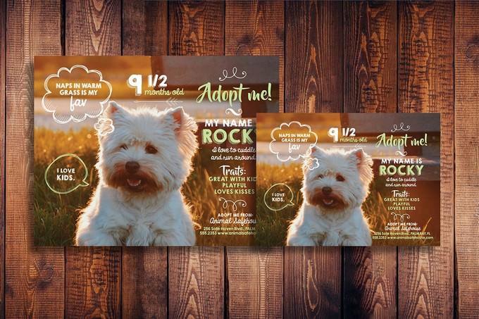 Cute Pet Adoption Flyer
