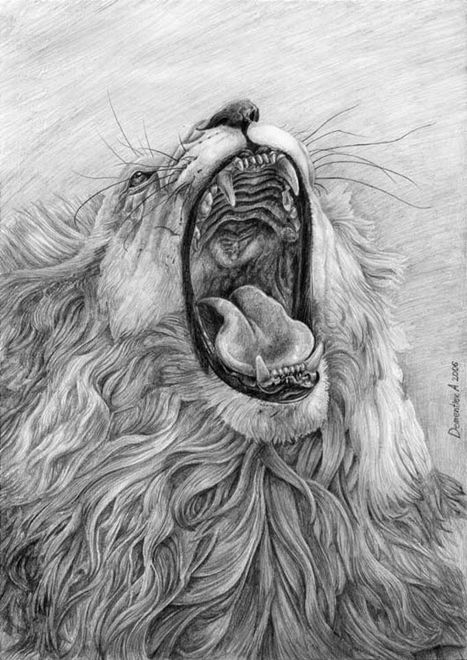 Lion's Mouth Drawing