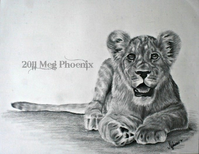 Little Lion Drawing