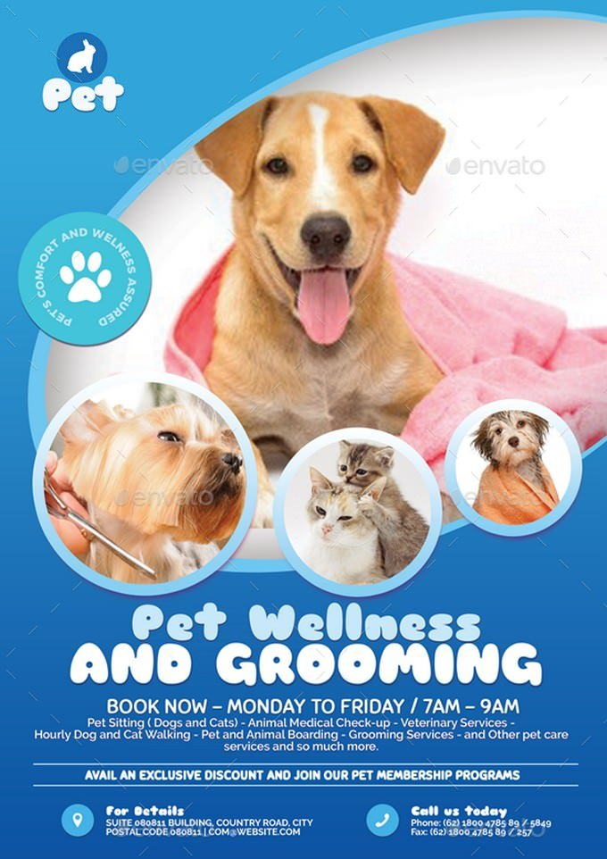 Pet Grooming Promotional Flyer Template
