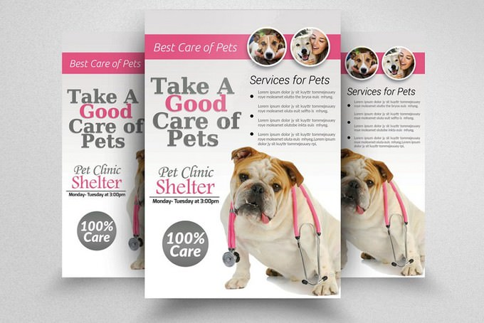Pets Clinic & Care Flyer