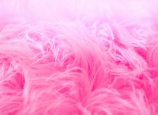 Pink Fur Closeup Background