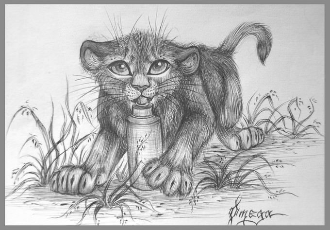 The Lion Cub Drawing