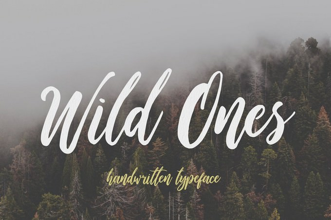 Wild Ones Adventure typeface
