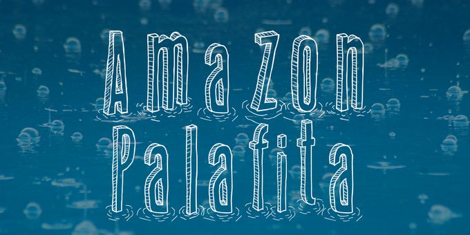 Amazon Palafita