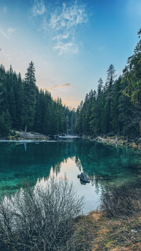 HD Lake forest ios Wallpaper-1080x1920