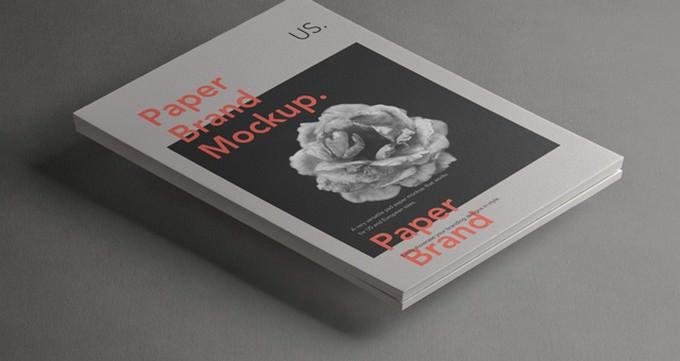 Paper Letterhead Brand