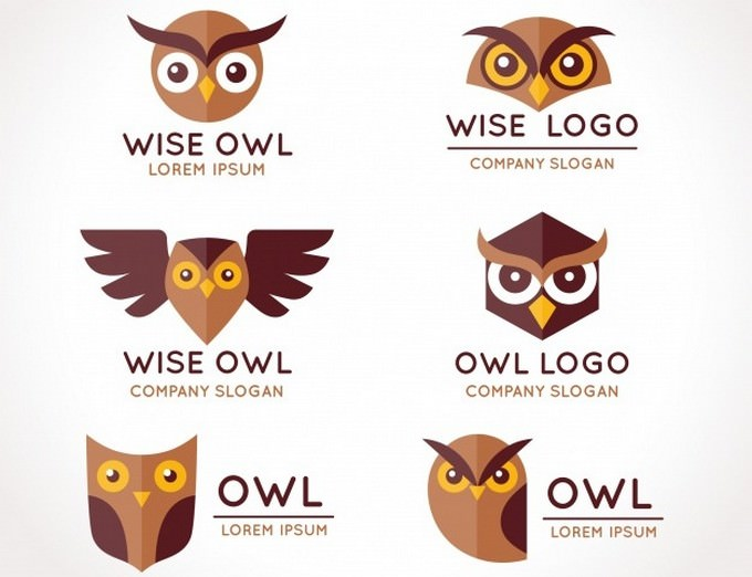 Owl logo Collection Flat