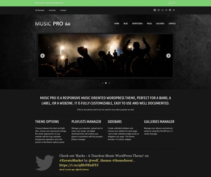 Music Pro Oriented WordPress Theme