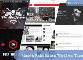 Music & Radio Station WordPress Theme