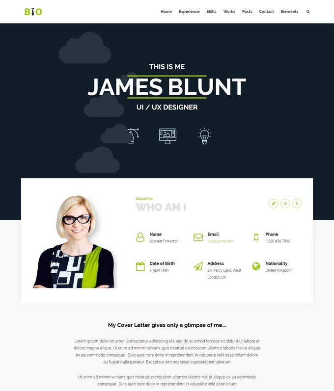 Resume, CV WordPress Theme