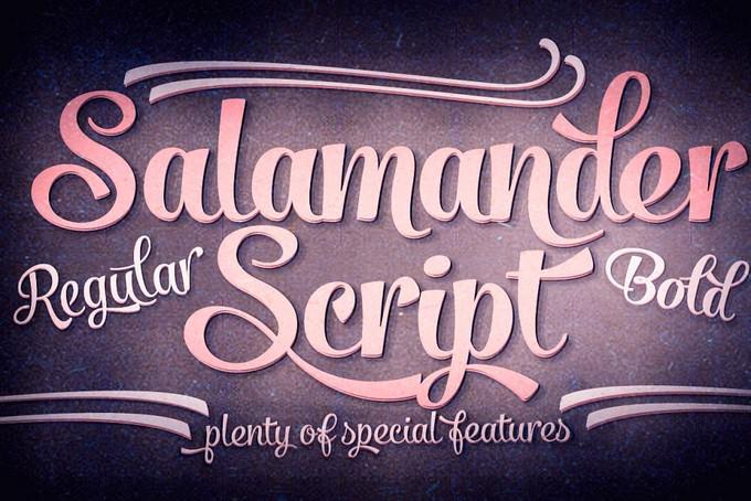 Salamander Script Font