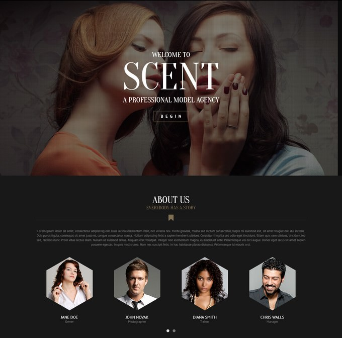 Model Agency Site Theme