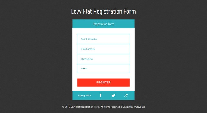 Levy Registration Form Responsive Template