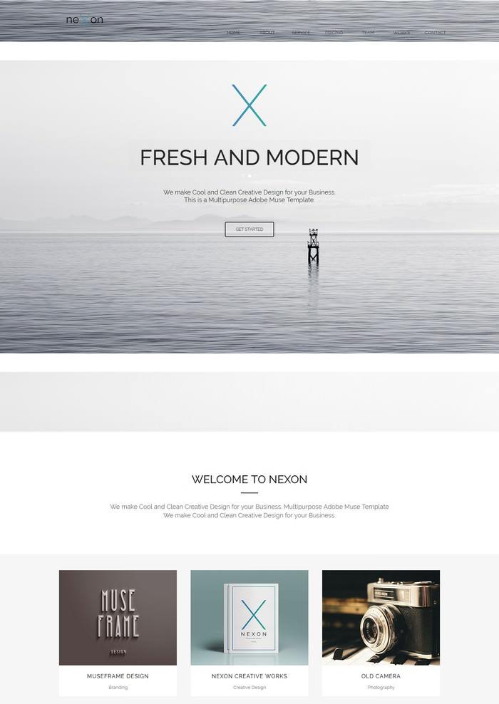 Nexon – One Page Parallax Adobe Muse Templates