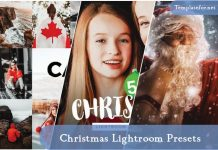 Christmas Lightroom Preset