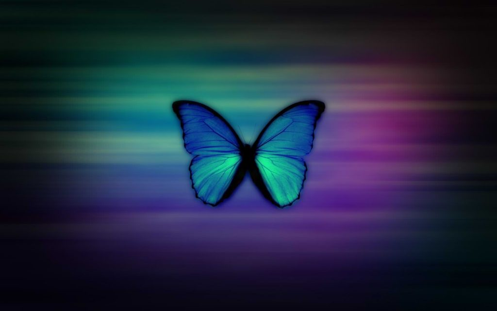 Butterfly Girly Background