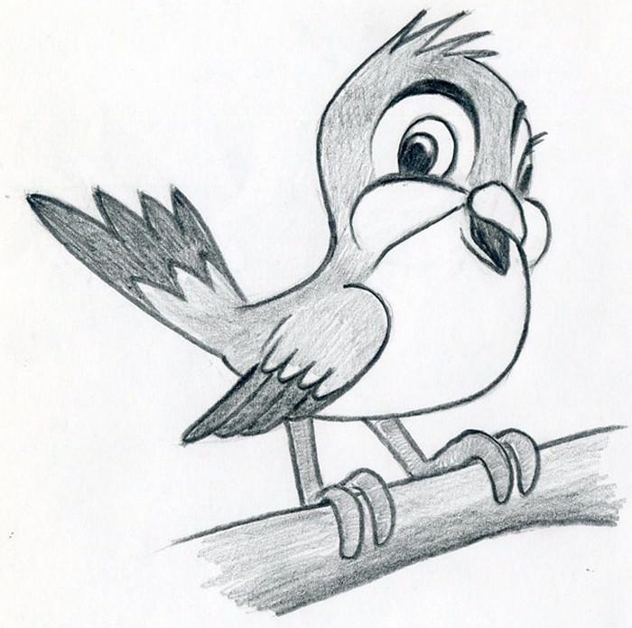 Cartoon Bird Draw
