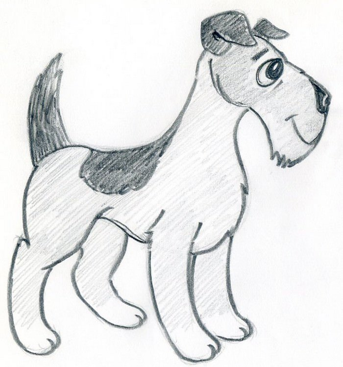 Cartoon Dog Draw