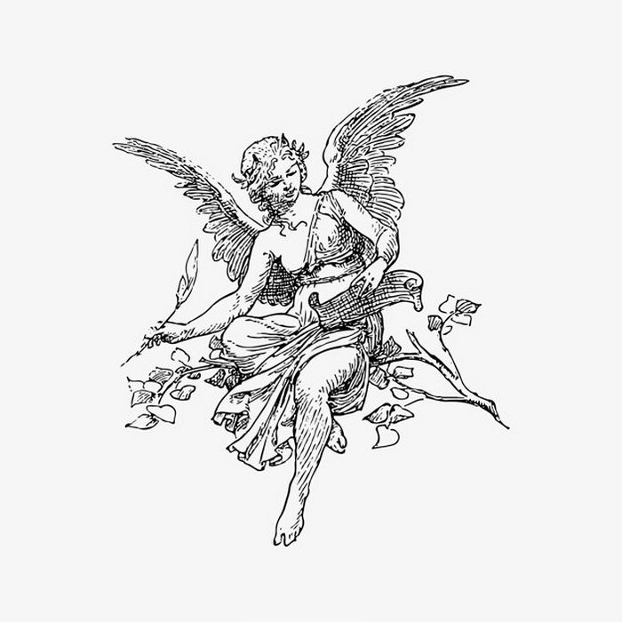 Female Angel Vintage Drawing