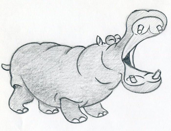 Hippo Step By Step Cartoon Draw