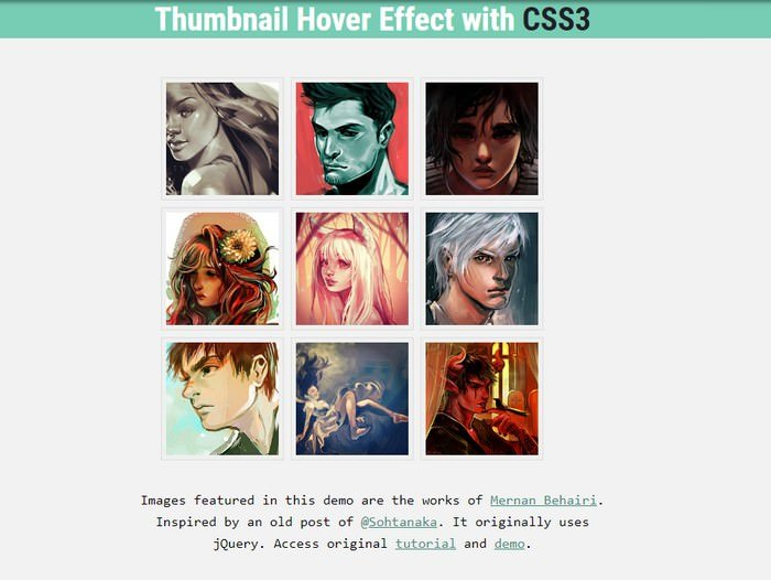 Pure CSS image Hover Effect
