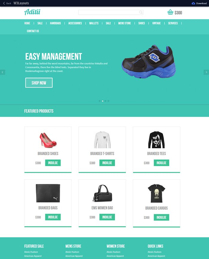 Aditii Free Website Template