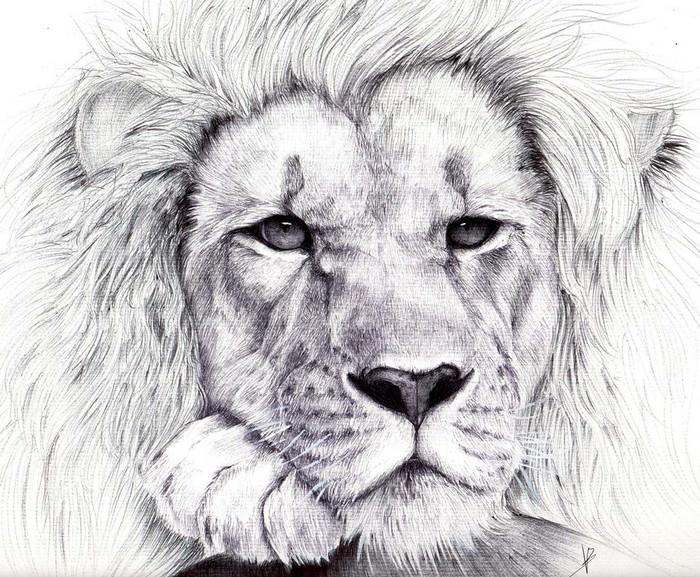 Lion BIC pen