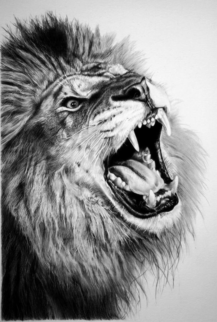 Pencil Lion