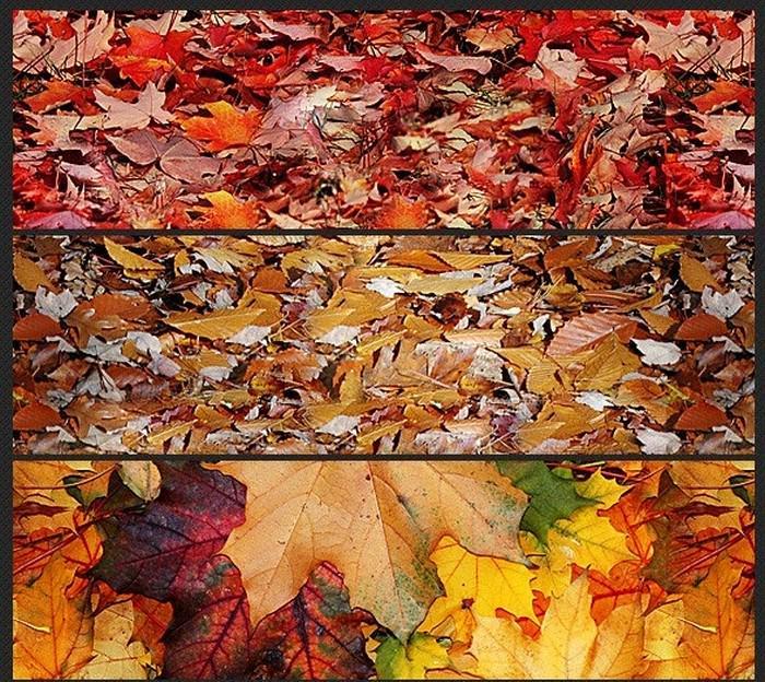 Leaves Carpet Seamless Patterns