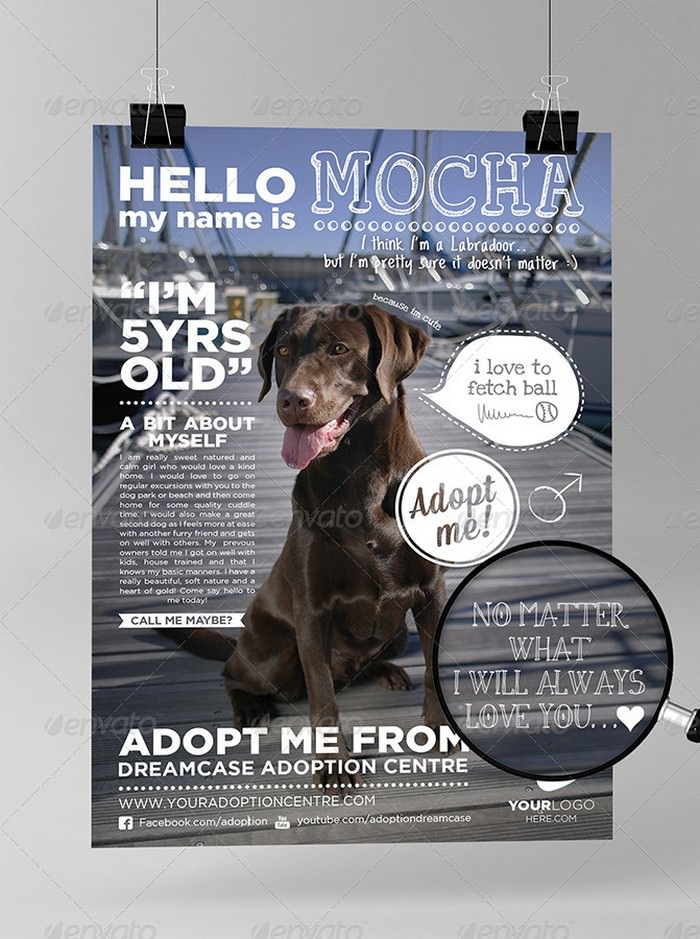 Animals - Adopt Me Flyer