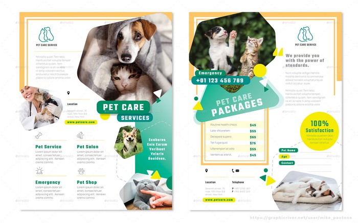 Pet Care Flyers 4 Options