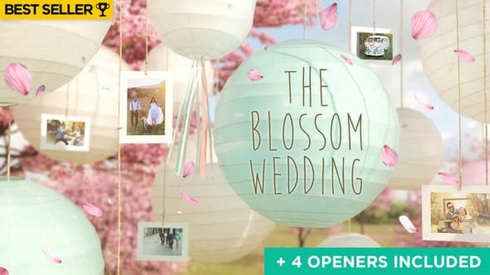 4 Wedding Slideshow Openers