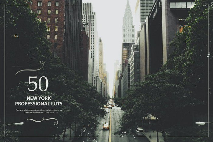 50 New York LUTs (Look Up Tables)