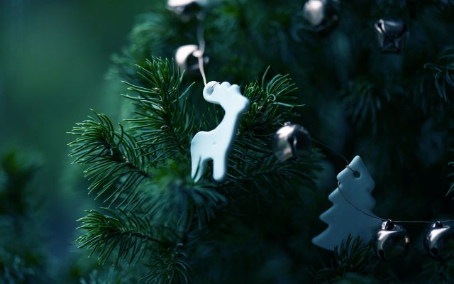 Christmas-Decoration-on-Spruce-Plant-1920×1200