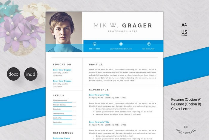 Professional Resume - CV