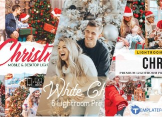 Christmas Lightroom Preset