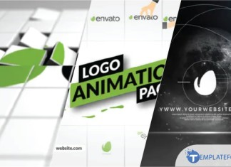 Logo Animation After Effect
